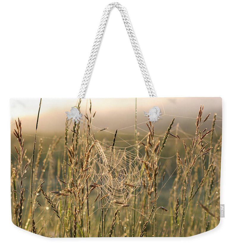 Morning Dew Weekender Tote Bag featuring the photograph Dew And Spider Webs by Andrea Lawrence
