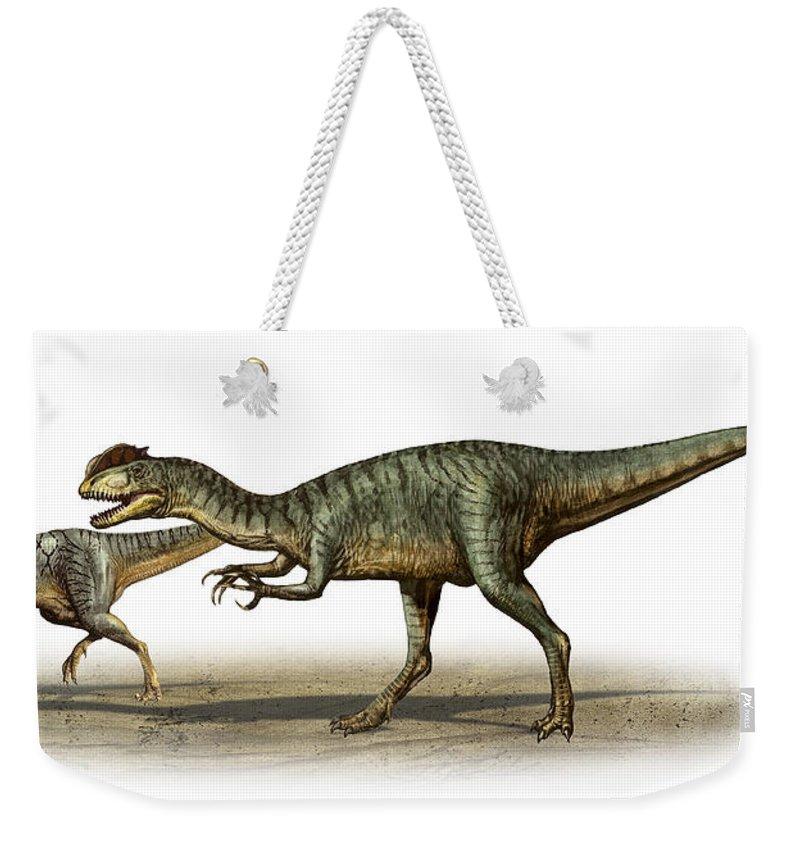 Horizontal Weekender Tote Bag featuring the digital art Dilophosaurus Wetherilli, A Prehistoric by Sergey Krasovskiy
