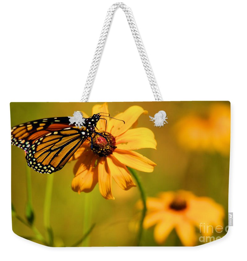 Butterfly Weekender Tote Bag featuring the photograph Dinner At Yosemite by Adam Jewell