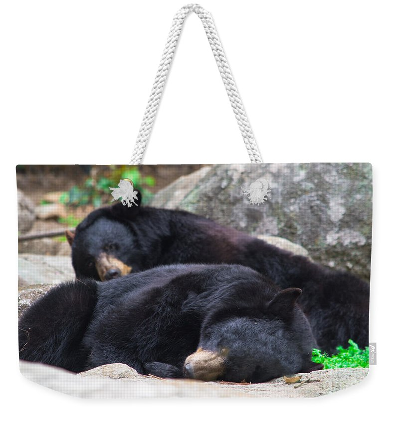 Nite Weekender Tote Bag featuring the photograph Do Not Awaken by Scott Hervieux