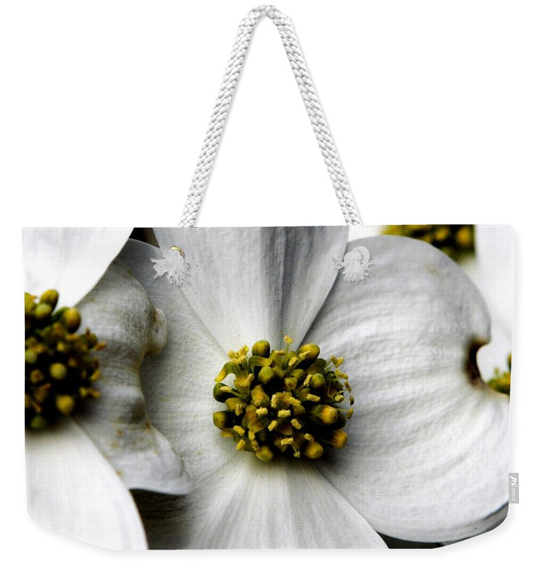 Dogwood Weekender Tote Bag featuring the photograph Dogwood Blossom by Dan Wells