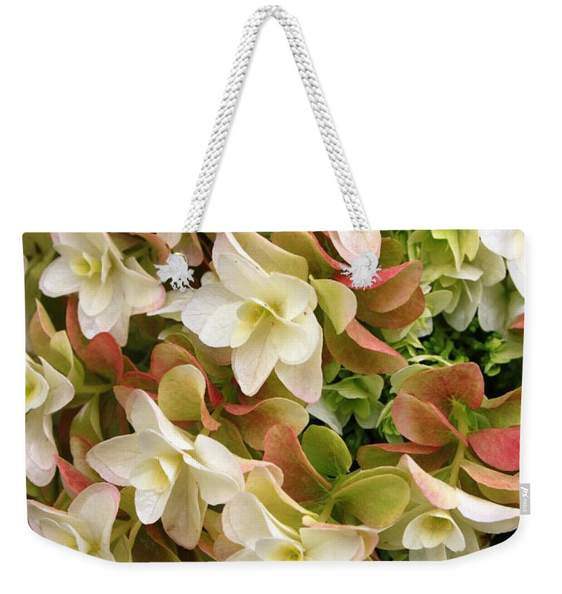 Flowers Weekender Tote Bag featuring the photograph Double Hydrangeas by Carol Groenen