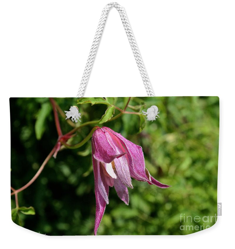 Outdoors Weekender Tote Bag featuring the photograph Downy Clematis by Susan Herber