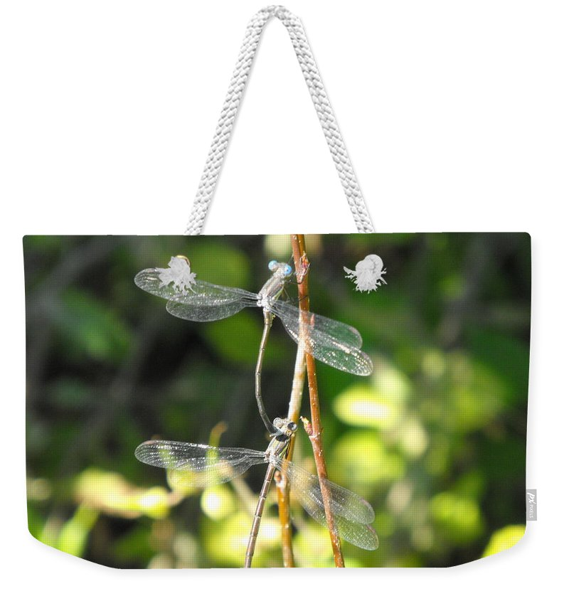 Dragonflies Weekender Tote Bag featuring the photograph Dragonflies by Paulina Roybal