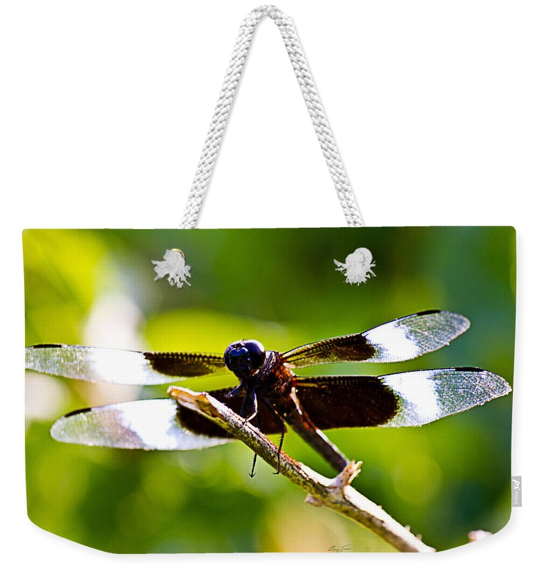 Dragonfly Weekender Tote Bag featuring the photograph Dragonfly Stalking by Barry Jones