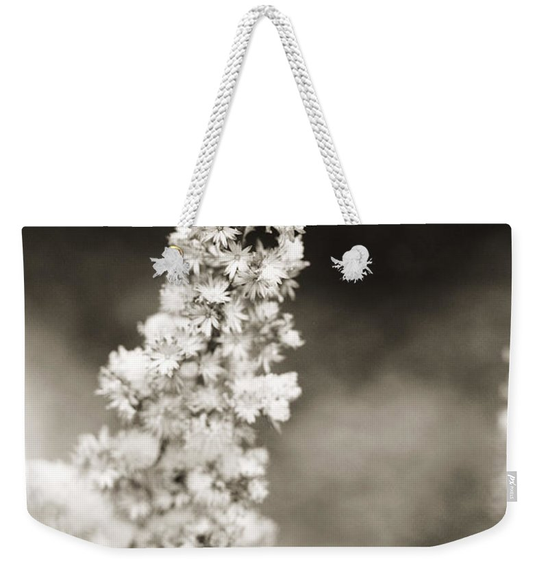 Dried Weekender Tote Bag featuring the photograph Dried Flower And Crystals 2 by Marilyn Hunt