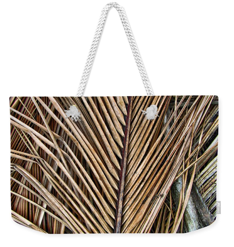 Branch Weekender Tote Bag featuring the photograph Dried Palm Fronds by Mark Sellers