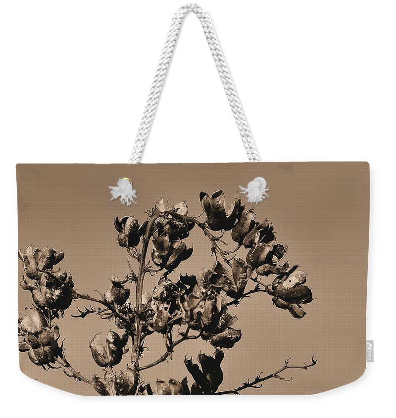 Dried Weekender Tote Bag featuring the photograph Dried Up by Todd Hostetter
