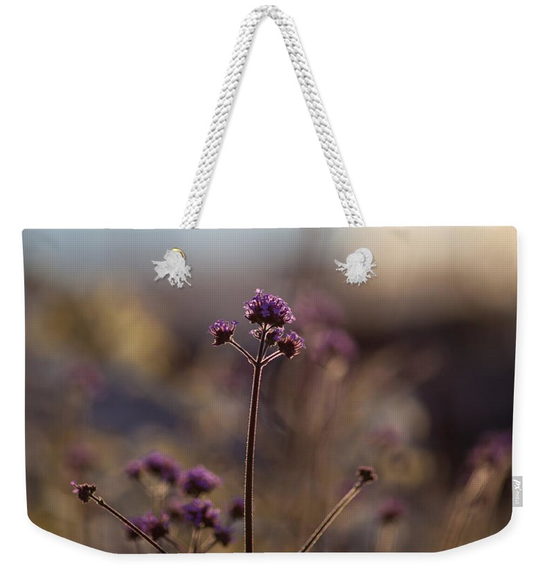 Flower Weekender Tote Bag featuring the photograph Dusk Edges by Mike Reid