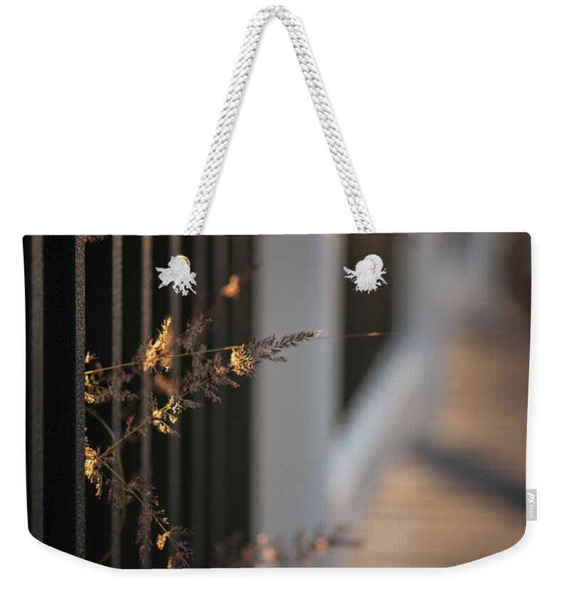 Flower Weekender Tote Bag featuring the photograph Dusk Grasses by Mike Reid