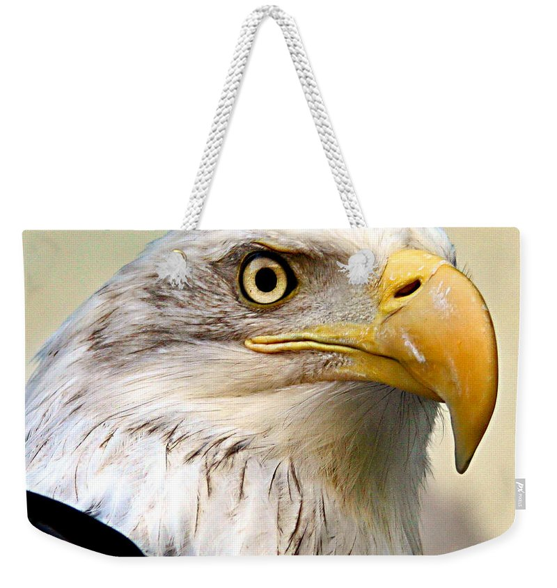 Animals Weekender Tote Bag featuring the photograph Eagle Portrait by Jean Noren