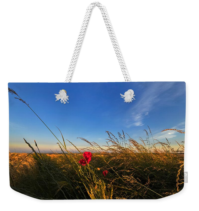 Beautiful Weekender Tote Bag featuring the photograph Early Poppies by Svetlana Sewell