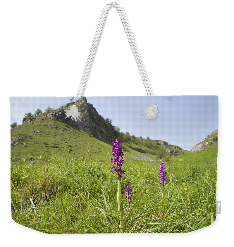 Orchid Weekender Tote Bag featuring the photograph Early Purple Orchids by Bob Kemp