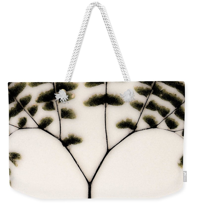 Dried Ferns Weekender Tote Bag featuring the mixed media Eastern Influence Fern by Marie Jamieson