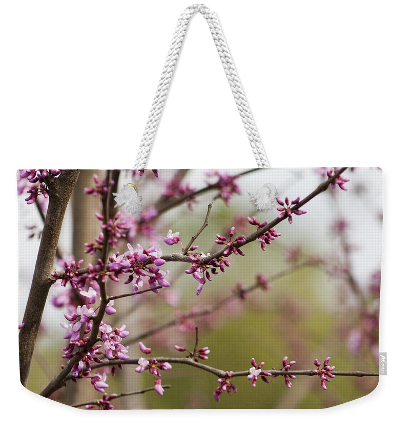 Eastern Weekender Tote Bag featuring the photograph Eastern Redbud Asian Style by Kathy Clark