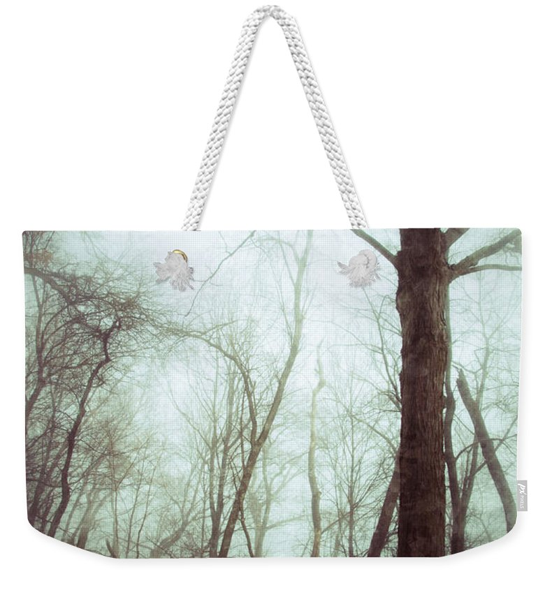 Rural Weekender Tote Bag featuring the photograph Eerie Winter Woods by Jill Battaglia