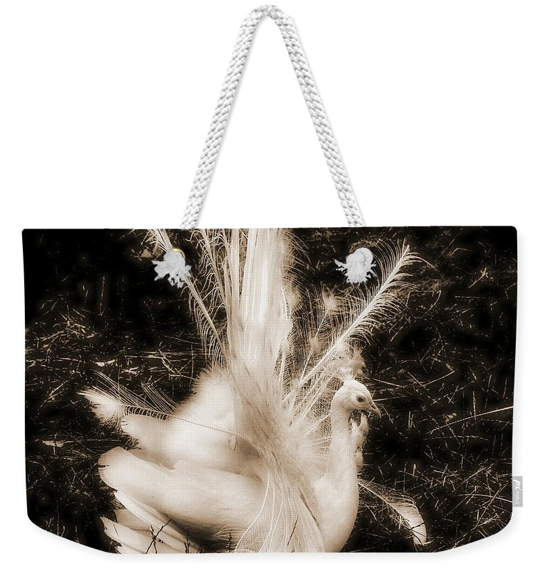Peacock Weekender Tote Bag featuring the photograph Effervescence IIi by Rory Sagner