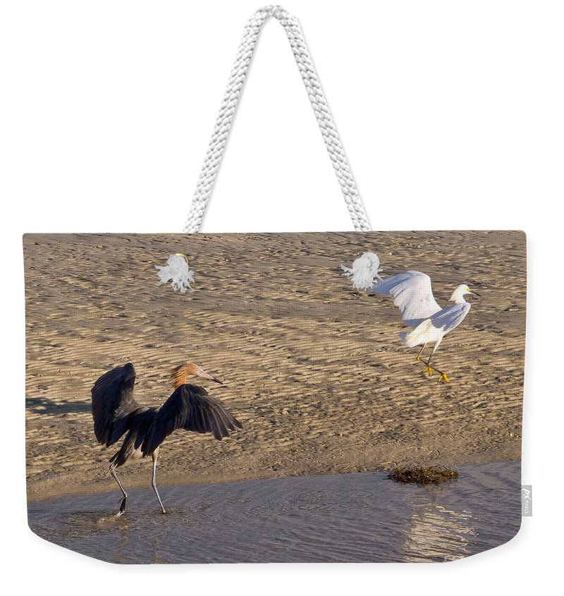 Ruffled Weekender Tote Bag featuring the photograph Egret Territory by Stephen Whalen