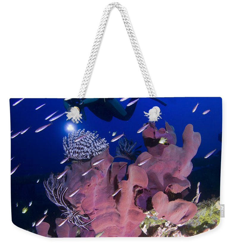 Feather Stars Weekender Tote Bag featuring the photograph Elephant Ear Sponge Attached by Steve Jones