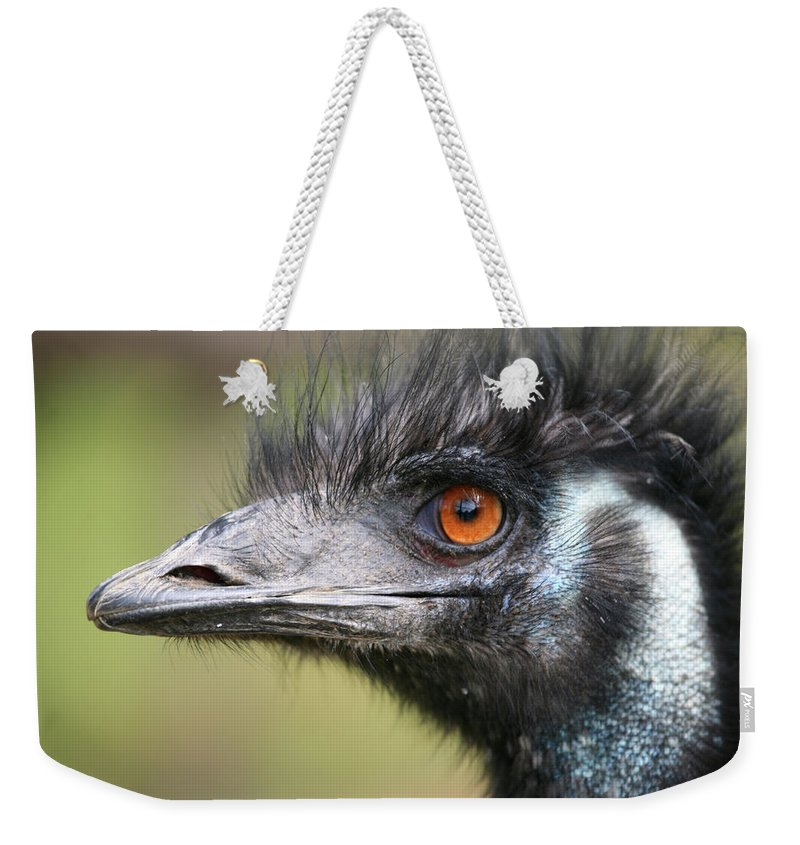 Emu Weekender Tote Bag featuring the photograph Emu by Karol Livote