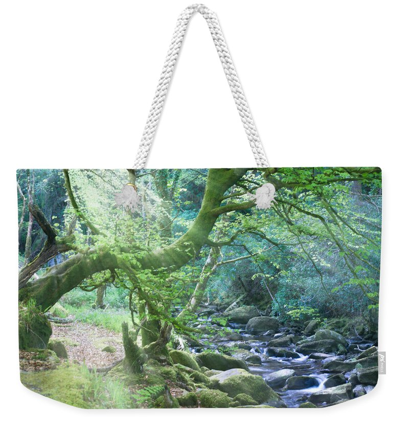 Leprechaun Weekender Tote Bag featuring the photograph Enchanted Leprechaun Forest by Douglas Barnett