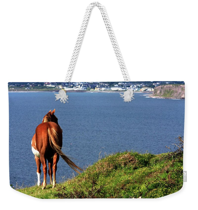 Horse Weekender Tote Bag featuring the photograph Equine View by Aidan Moran