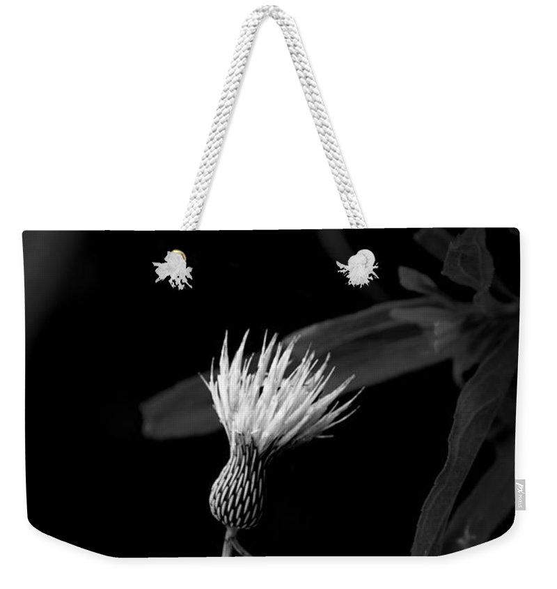 Plants Weekender Tote Bag featuring the photograph Escaped by David Weeks