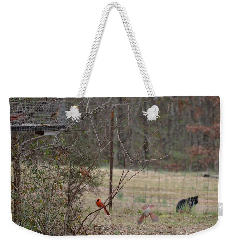 Birds Weekender Tote Bag featuring the photograph Escaping by Donna Brown