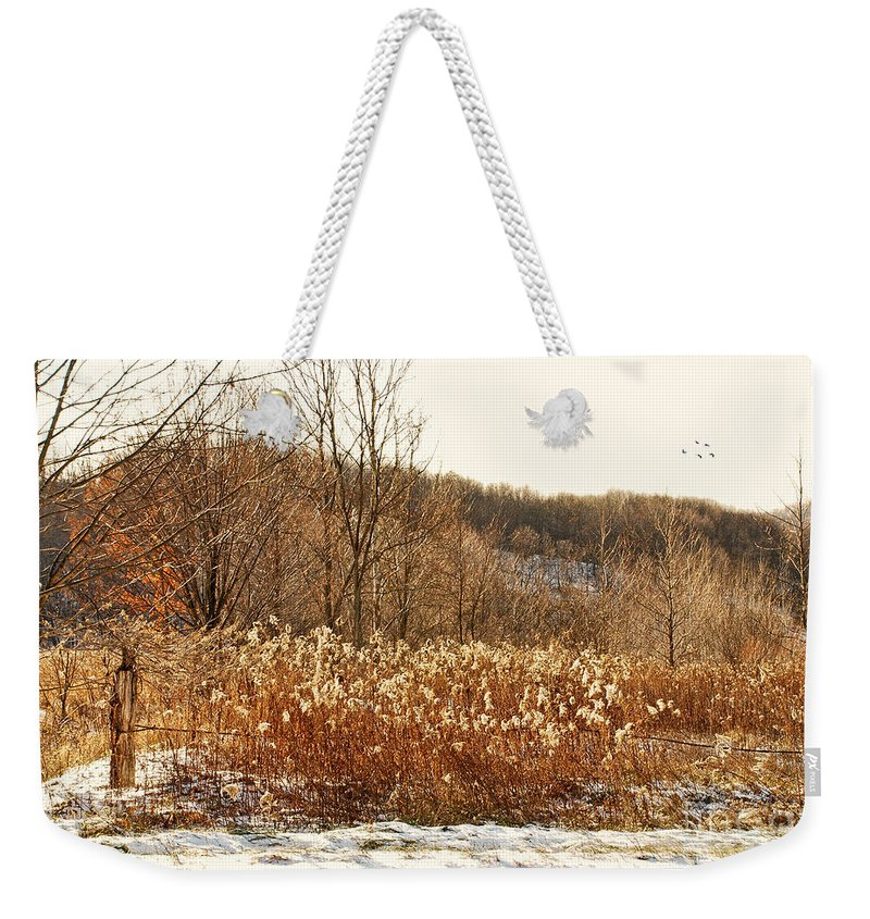 Field Weekender Tote Bag featuring the photograph Even Now By The Gate by Lois Bryan