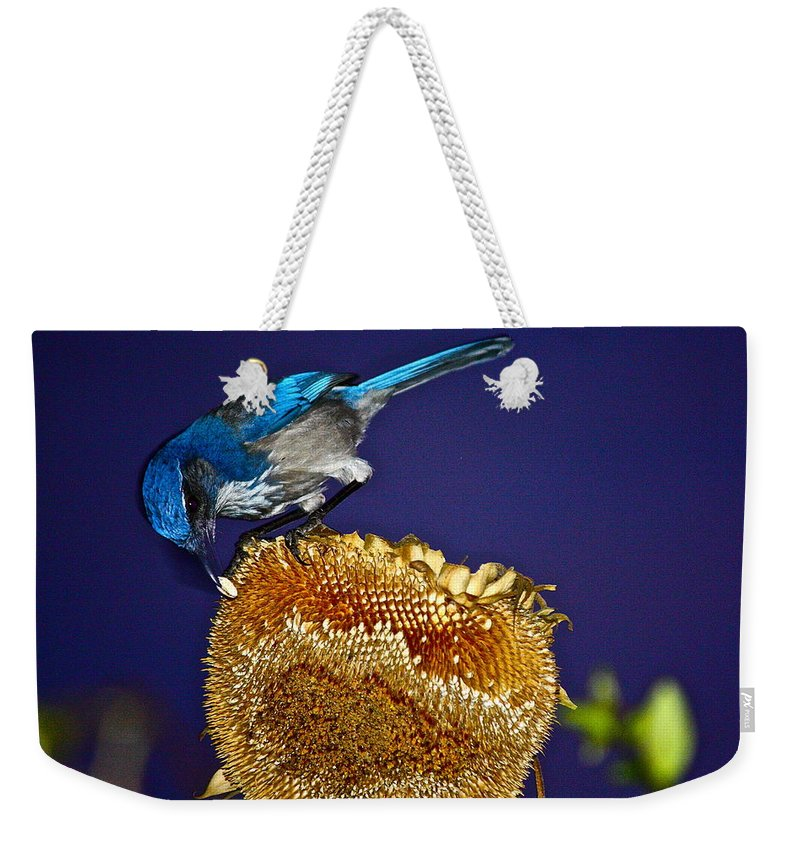 Birds Weekender Tote Bag featuring the photograph Evening Snack by Diana Hatcher