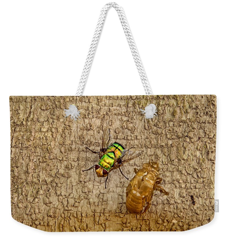 Fly Weekender Tote Bag featuring the photograph Evolving Nature by Douglas Barnard