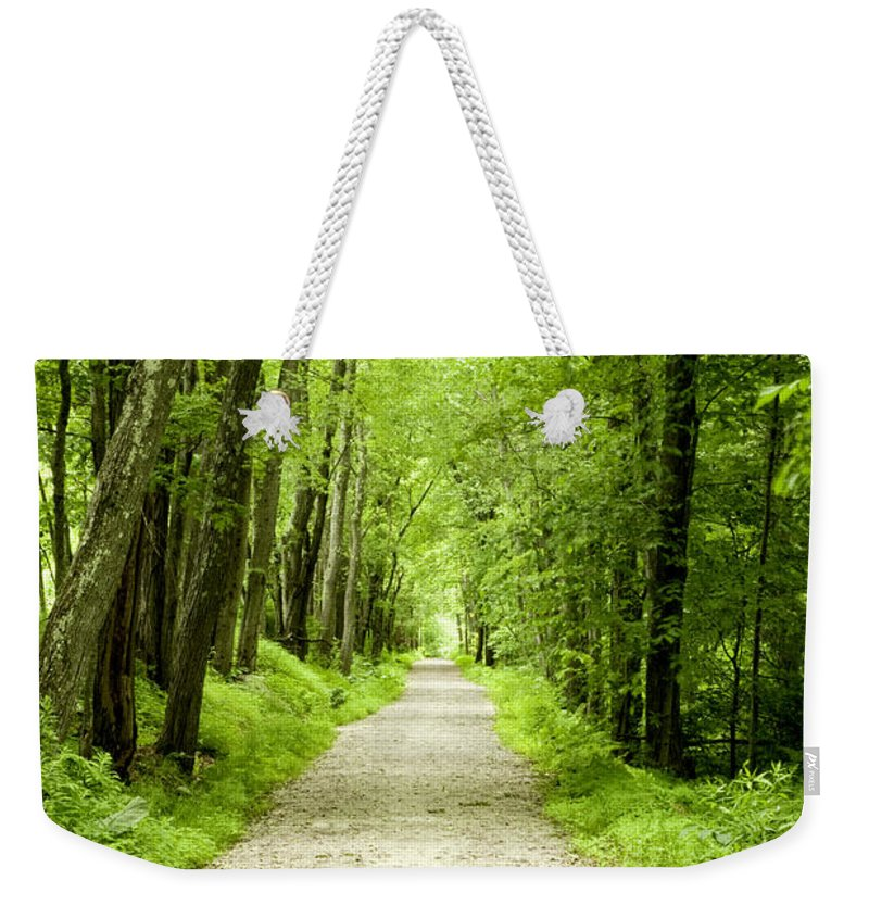 Art Weekender Tote Bag featuring the photograph Exploring by Greg Fortier