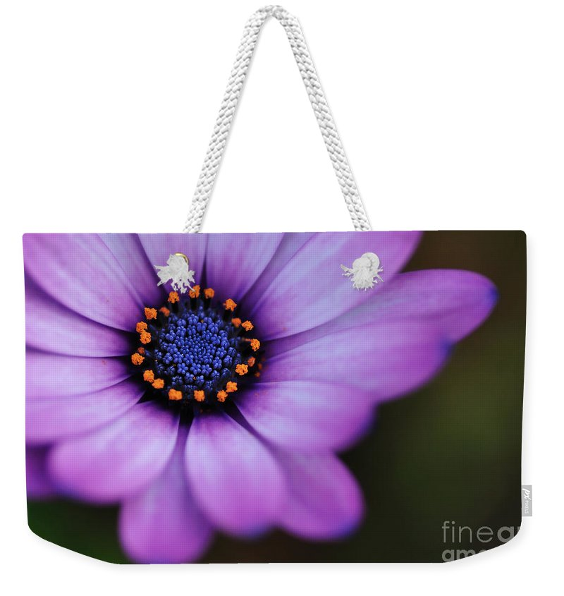 Photography Weekender Tote Bag featuring the photograph Eye Of The Daisy by Kaye Menner