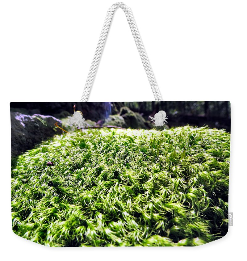 Fairy Weekender Tote Bag featuring the photograph Fairie Watches Over by Art Dingo