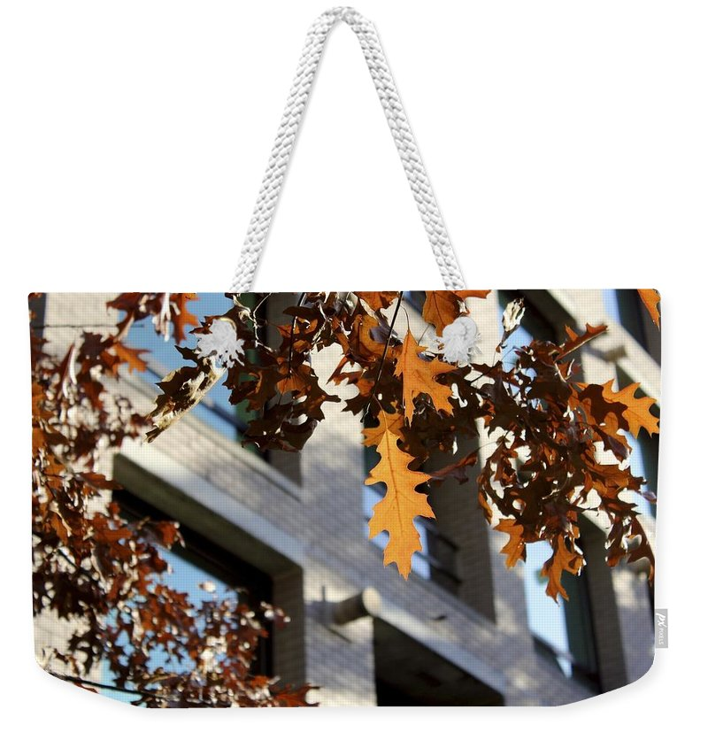 Oak Leaves Weekender Tote Bag featuring the photograph Fall In The City 3 by Alanna DPhoto