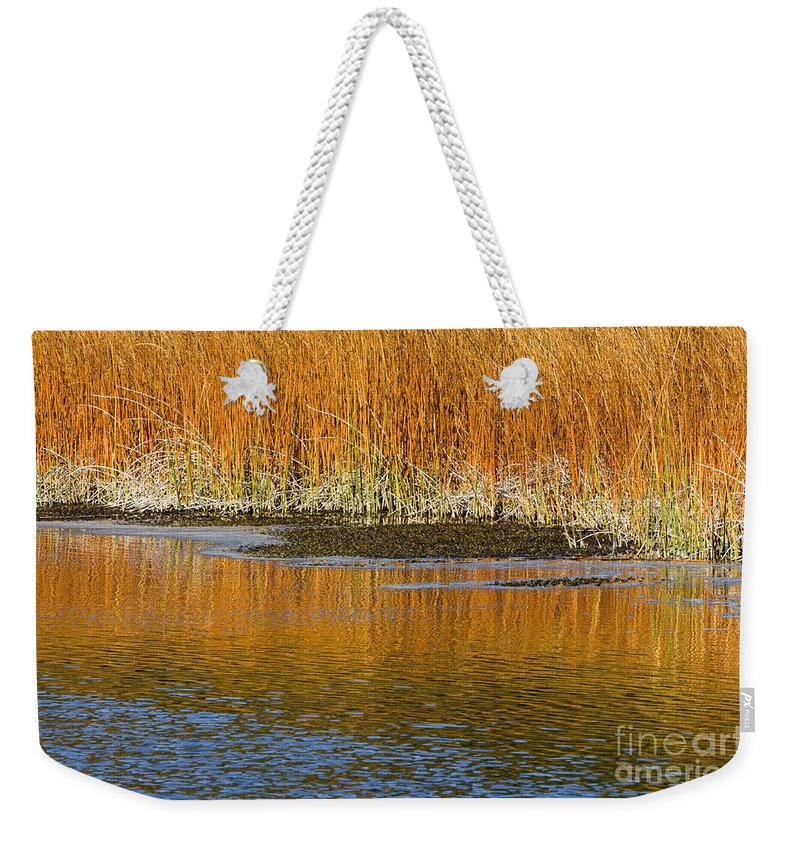Sandra Bronstein Weekender Tote Bag featuring the photograph Fall In Yellowstone National Park by Sandra Bronstein