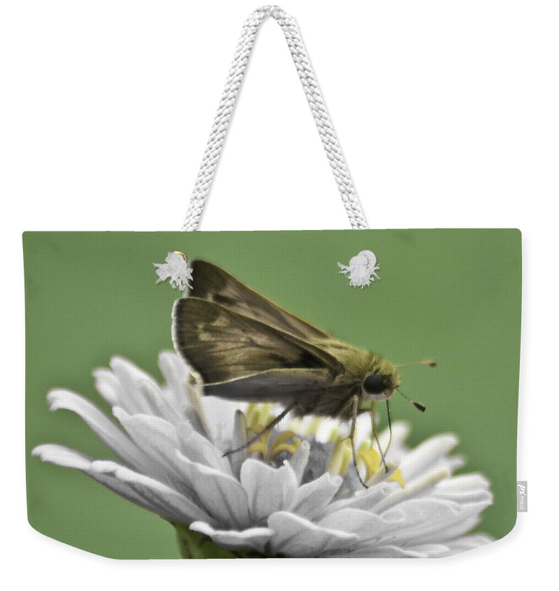 Bug Weekender Tote Bag featuring the photograph Fall Is Right Around The Corner by Trish Tritz