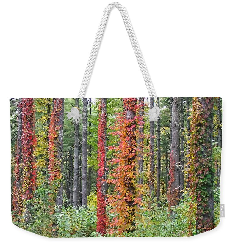 Ivy Weekender Tote Bag featuring the photograph Fall Ivy On The Trees by Duane McCullough