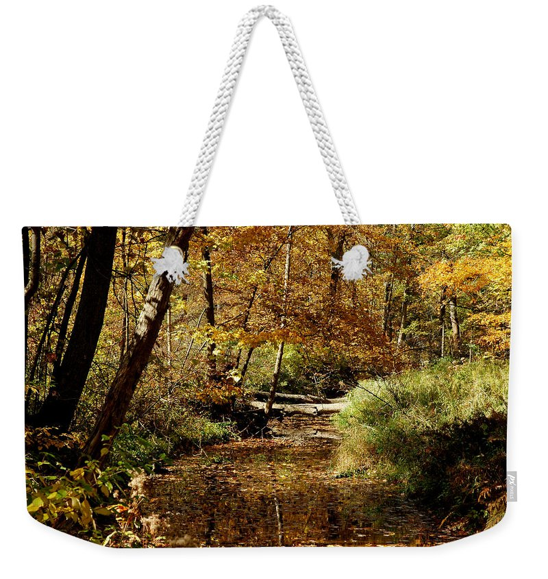Landscapes Weekender Tote Bag featuring the photograph Fall River Colors by LeeAnn McLaneGoetz McLaneGoetzStudioLLCcom