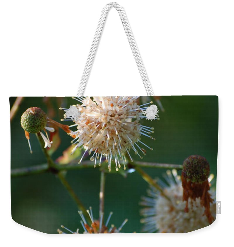 Buttonbush Weekender Tote Bag featuring the photograph Fallen Flowers by Robert Meanor