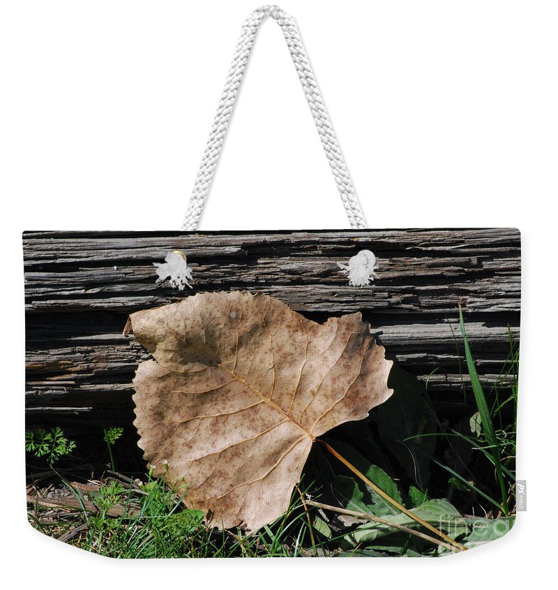 Leaf Weekender Tote Bag featuring the photograph Fallen Leaf by Grace Grogan