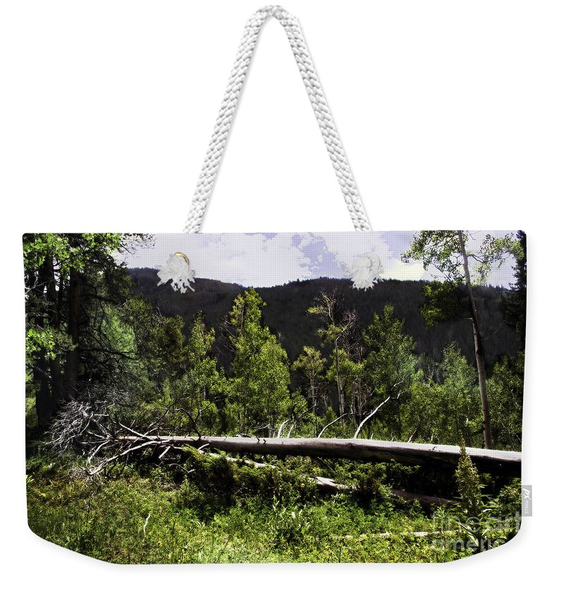 Trees Weekender Tote Bag featuring the photograph Fallen Tree by Madeline Ellis
