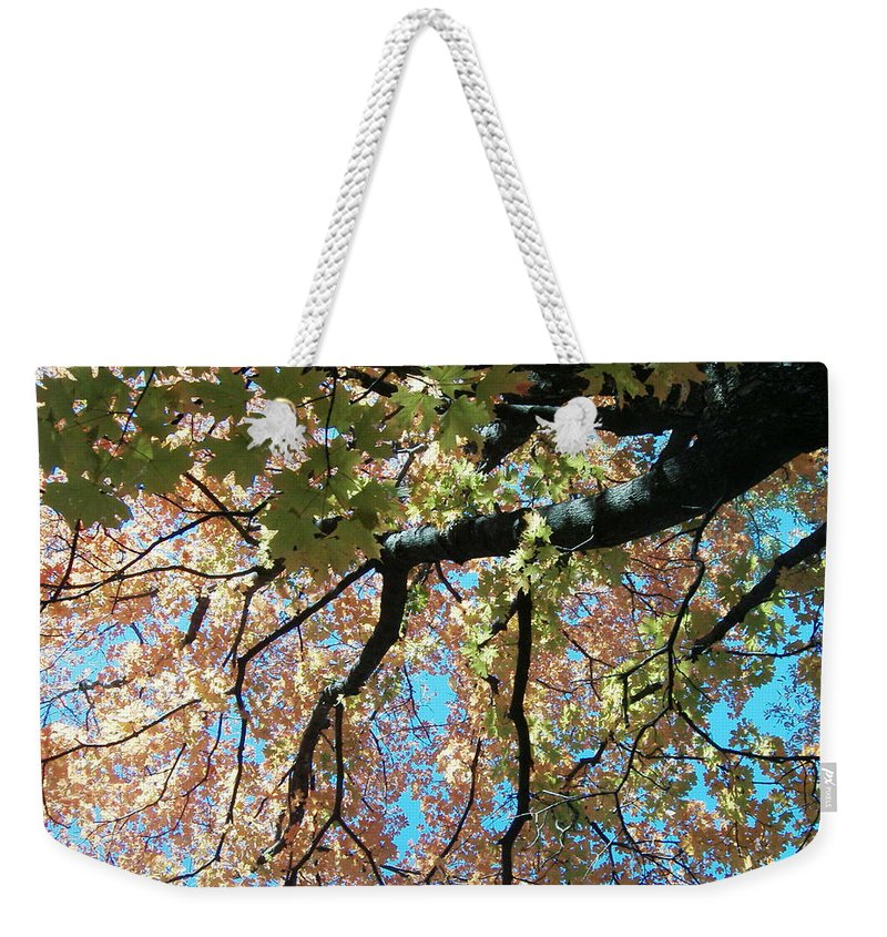 Trees Turning Fall Colors Weekender Tote Bag featuring the photograph Falls Coming by Karen Capehart