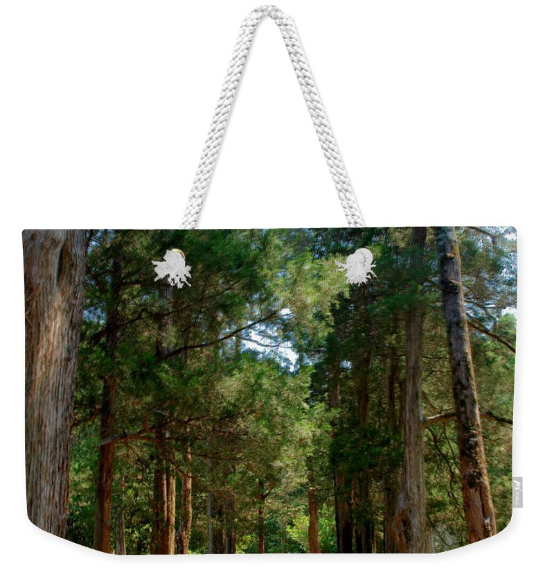 Faulkner Weekender Tote Bag featuring the photograph Faulkner's Front Porch by Joshua House