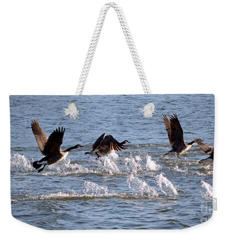 Color Photography Weekender Tote Bag featuring the photograph Feet Don't Fail Me Now by Sue Stefanowicz
