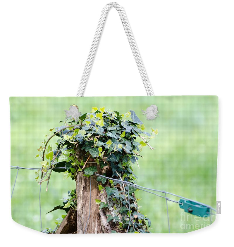 Fence Weekender Tote Bag featuring the photograph Fence Port by Mats Silvan