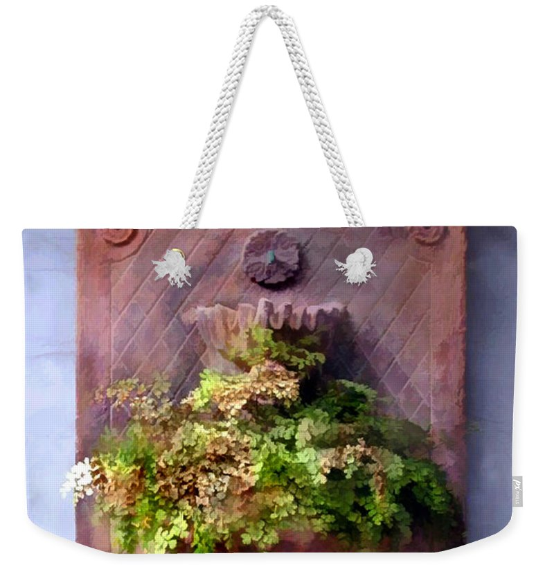 Weekender Tote Bag featuring the painting Fern In Antique Wall Planter by Elaine Plesser