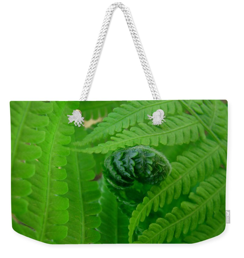 Fern Weekender Tote Bag featuring the photograph Ferns Fine Art Prints Green Forest Fern by Patti Baslee