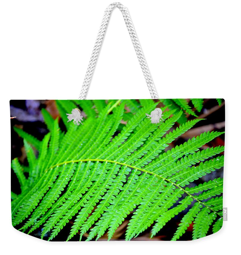 Woods Weekender Tote Bag featuring the photograph Ferns by Kari Tedrick