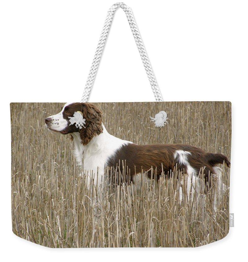 Field Bred Springer Spaniel Weekender Tote Bag